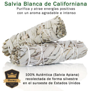 Kit Inciensos Salvia Blanca y Palo Santo